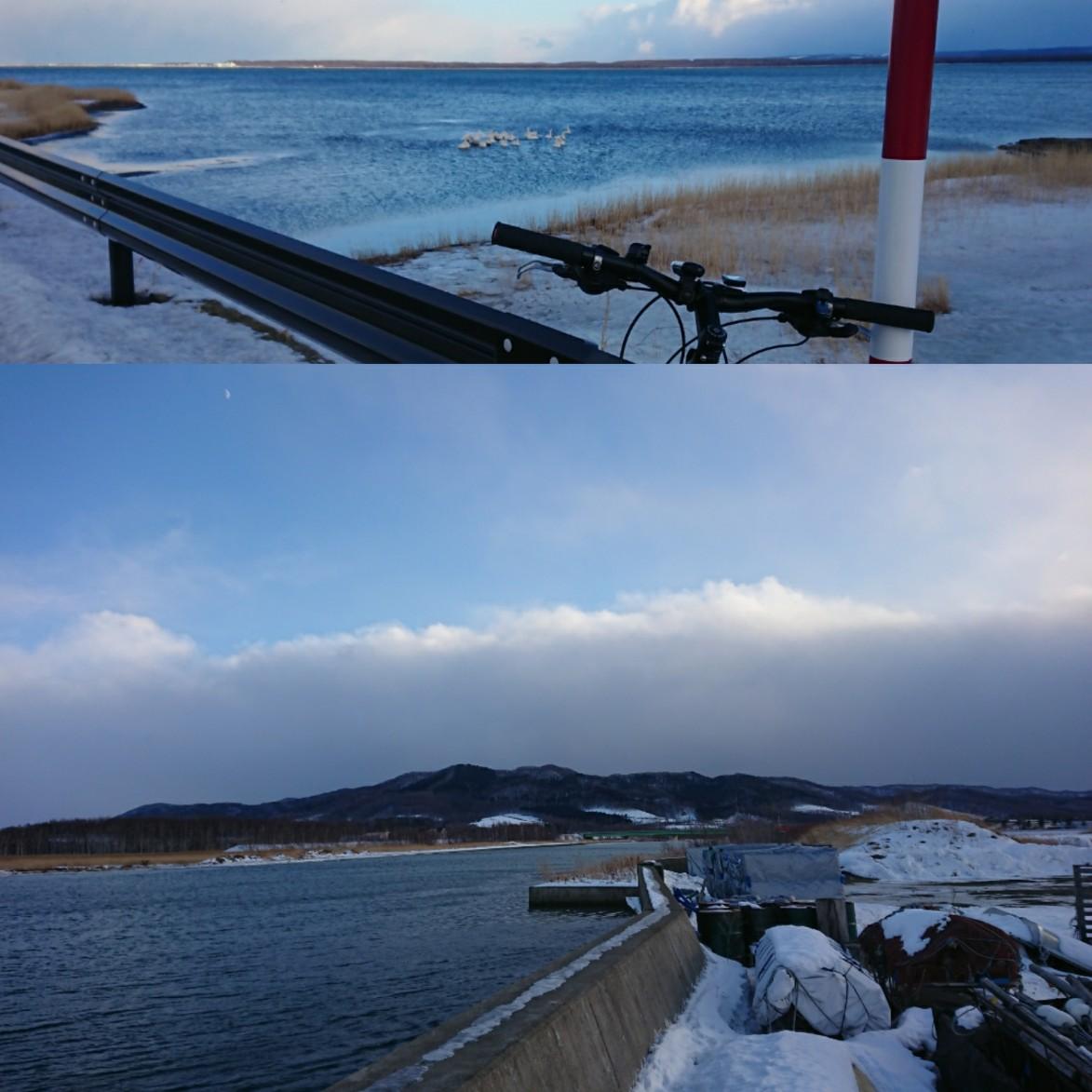 外は寒いが昨日は暖気が