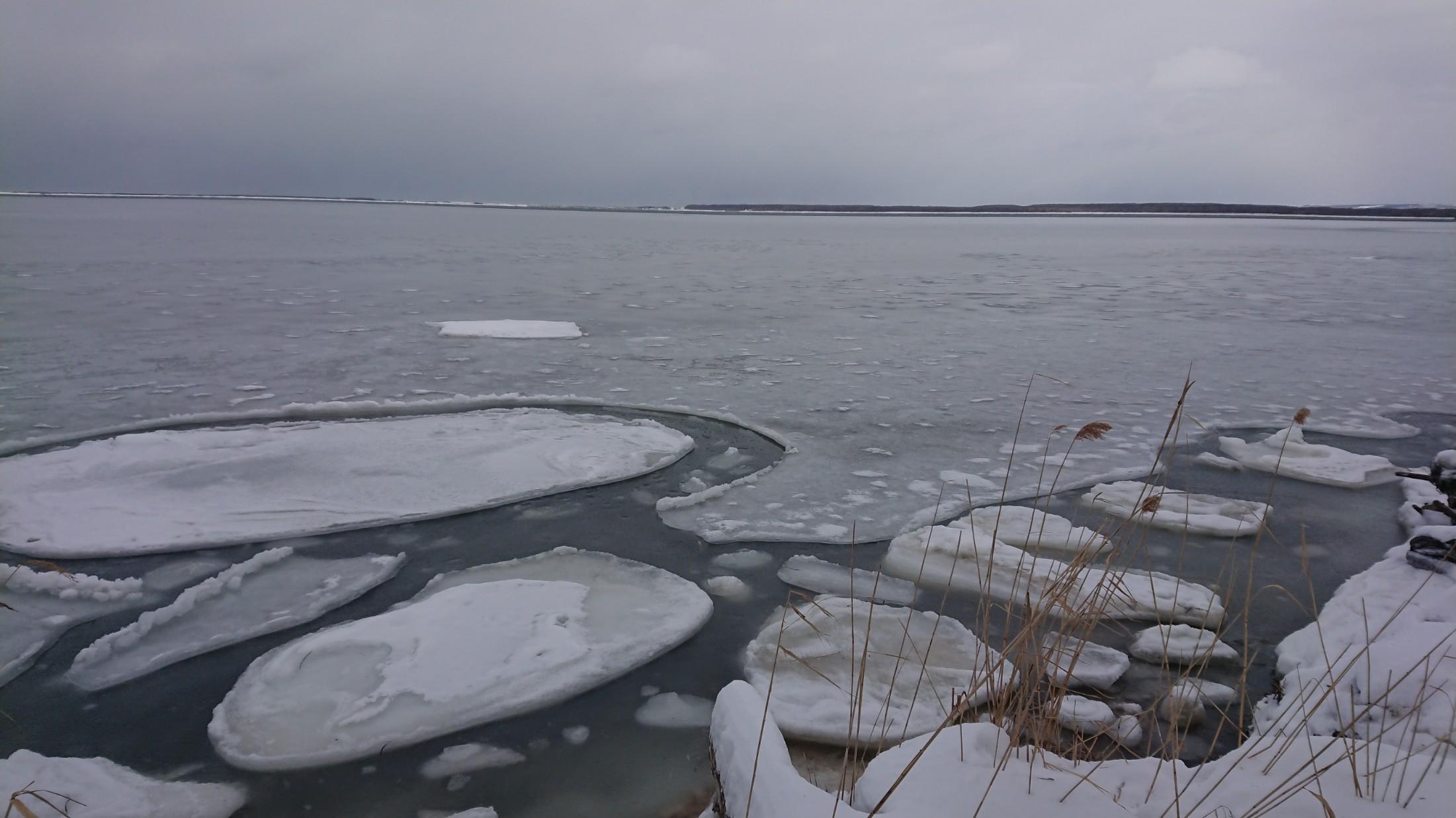 流氷ではない